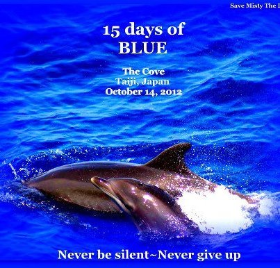 Blue Cove in Taiji