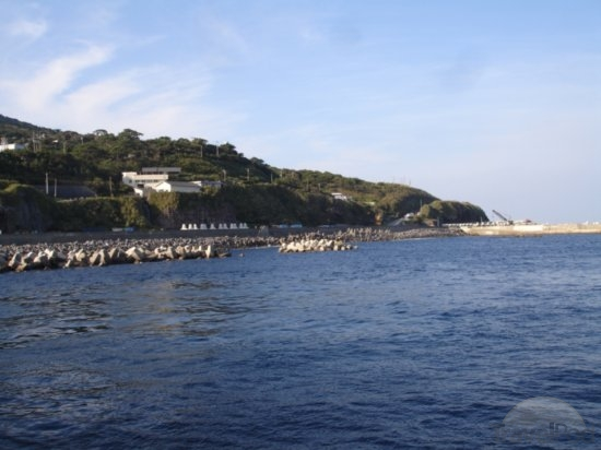 The Toshima Dolphin Project in Japan. Not all of Japan Hunts Wild Dolphins