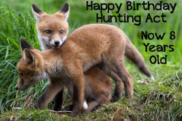 Happy Birthday Hunting Act