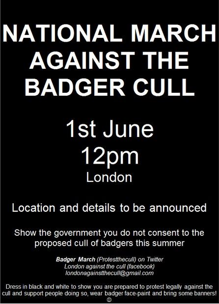national march against badger cull