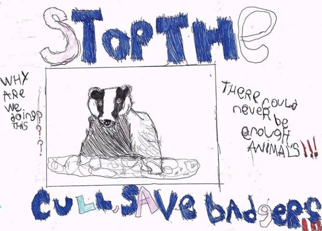 save the badgers